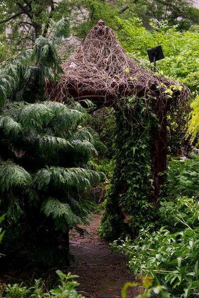 6BC Botanical Garden - Garden Blog